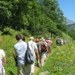 Promenade musicale vers Poingt-Ravier